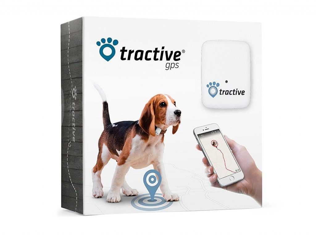 Tractive GPS chien