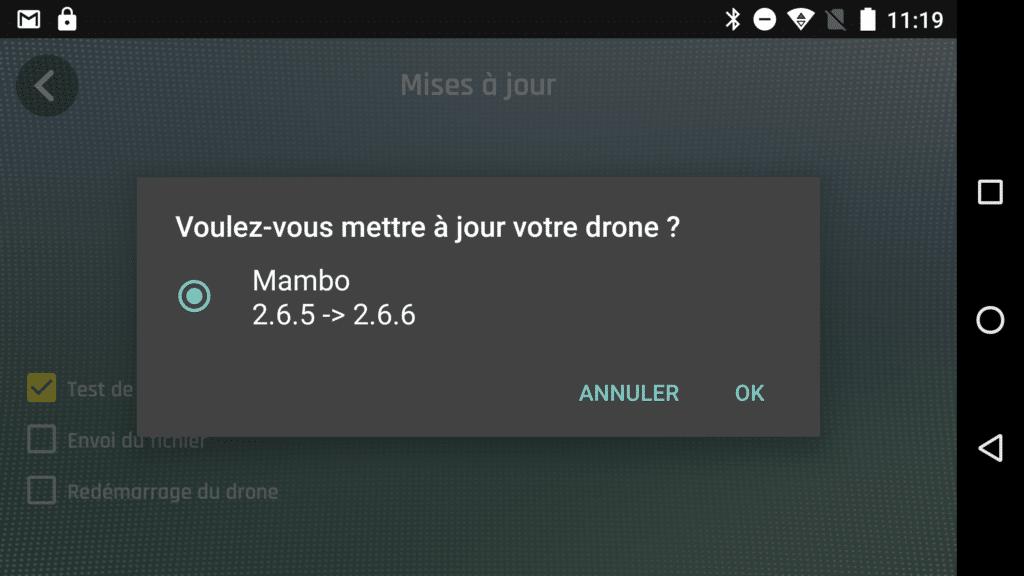 Dès la première connexion le Mambo sera mis à jour.