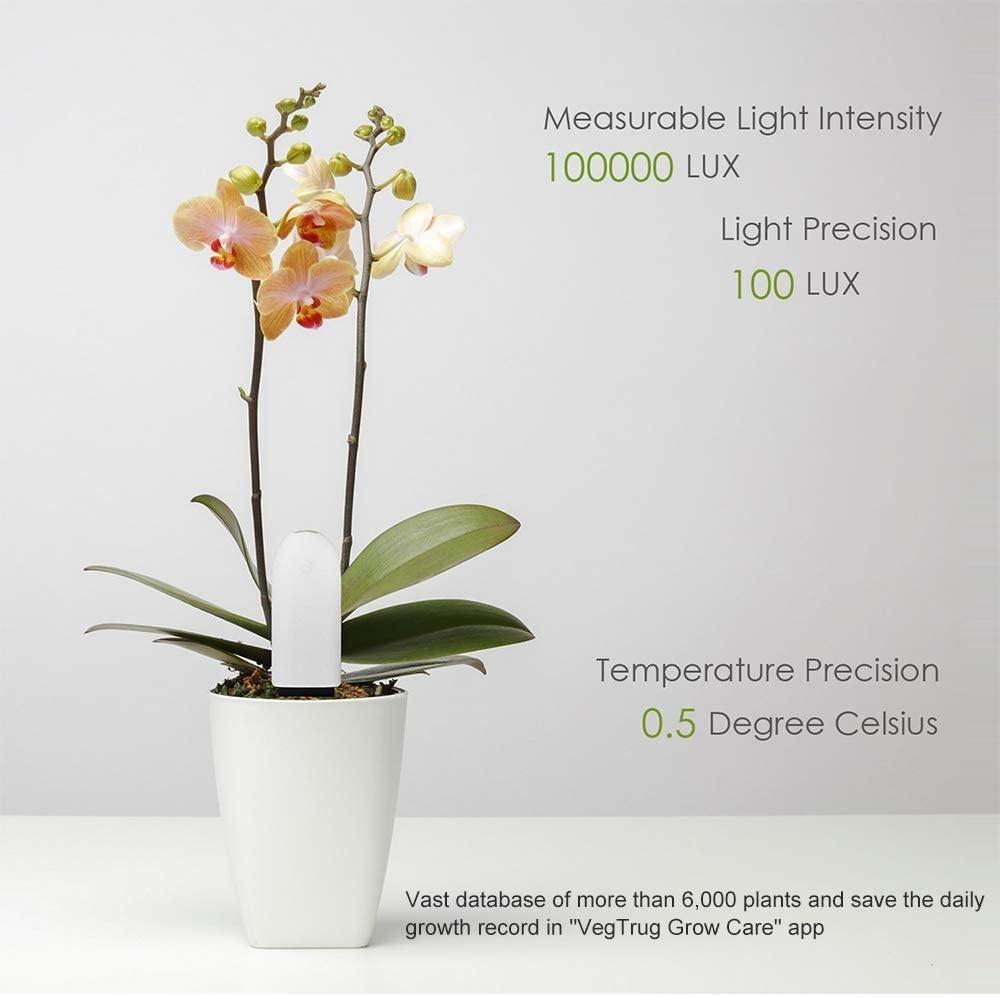 Moniteur de plantes intelligentes VegTrug