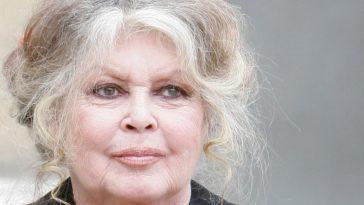 Brigitte Bardot dévoile sa maison à Saint-Tropez : un sanctuaire, pour elle et pour les animaux
