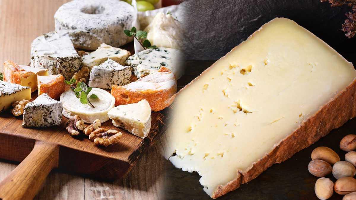 Rappel Produit: Danger, Ces fromages très connus à ne surtout pas consommer! Ils sont rappelés en urgence - Objeko