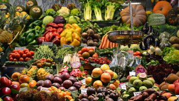Alimentation : voici les cinq aliments magiques et anti-fatigue