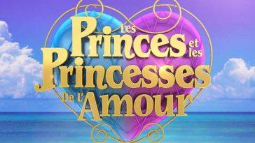 Les Princes et Les Princesses de l'Amour : un ancien candidat en prison pour violences conjugales