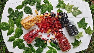 Cuisine : avec ces 5 ustensiles, on réduit le gaspillage et on augmente la conservation de la nourriture !