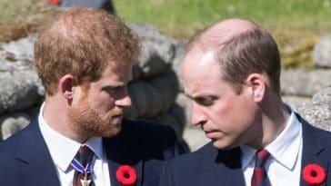 Harry et William évitent le pire lors de l'inauguration d'une statue à l'effigie de leur mère