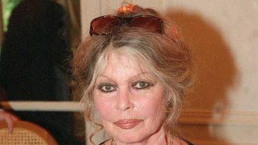 Brigitte Bardot, furieuse, pousse encore un grand coup de gueule
