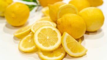 Le jus de citron : faut-il en consommer à jeun ? Nos conseils santé sur le fruit jaune