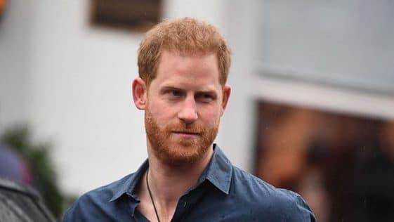 Prince Harry : quel est son avis sur « The Prince », la série qui démonte la famille royale ?