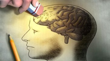 Alzheimer : découvrez les 10 signes précurseurs de la maladie, à absolument surveiller