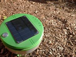 Tertill : un robot écologique et intelligent pour désherber